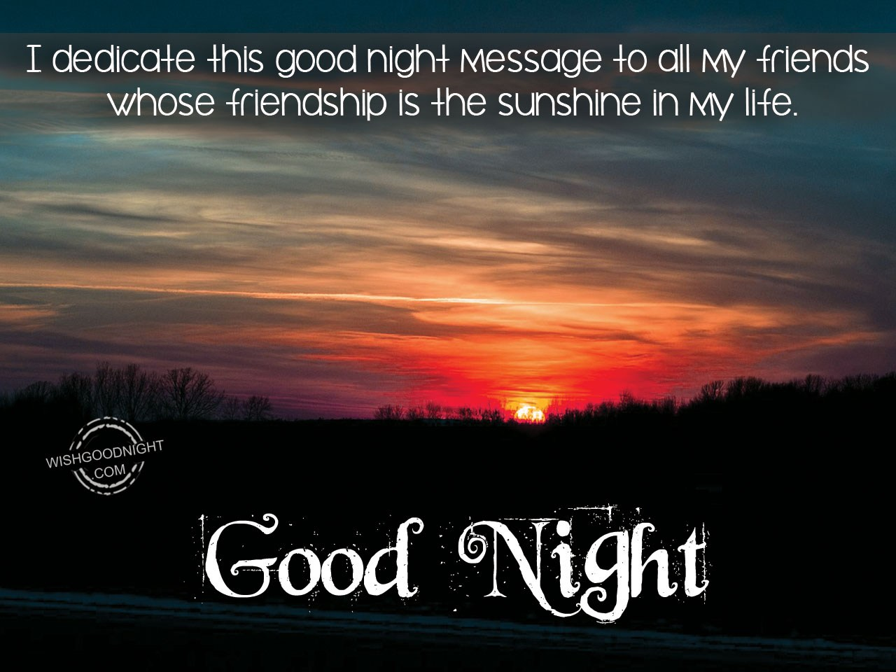 I Dedicate This Good Night Message To All My Friends Good Night