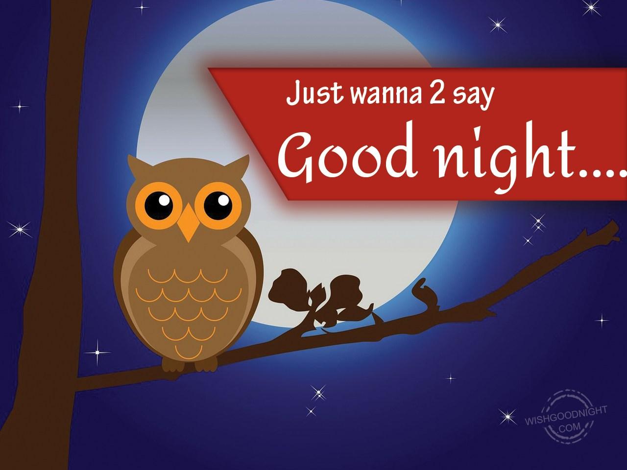 Just Wanna To Say Good Night Good Night Pictures Wishgoodnightcom
