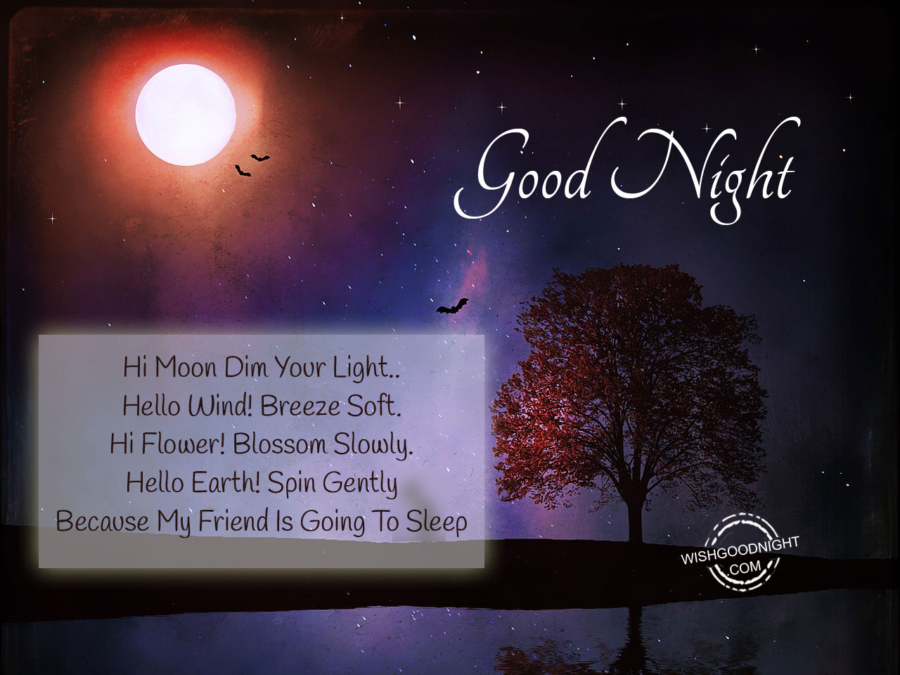 Good Night Wishes For Friends Good Night Pictures Wishgoodnightcom