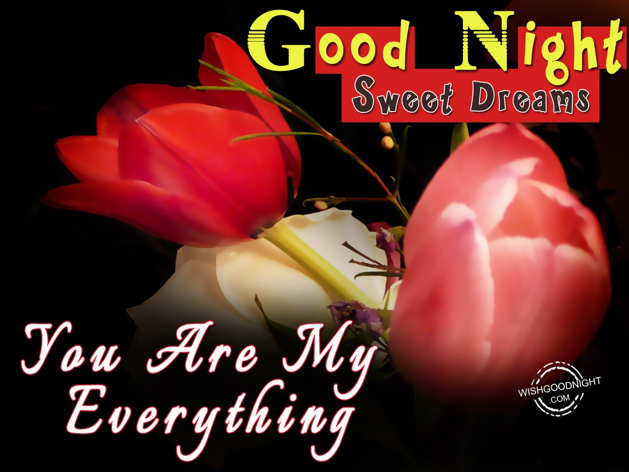Good Night My Love You Are My Everything Good Night Pictures