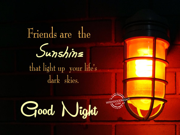 Friends are the sunshine,Good Night