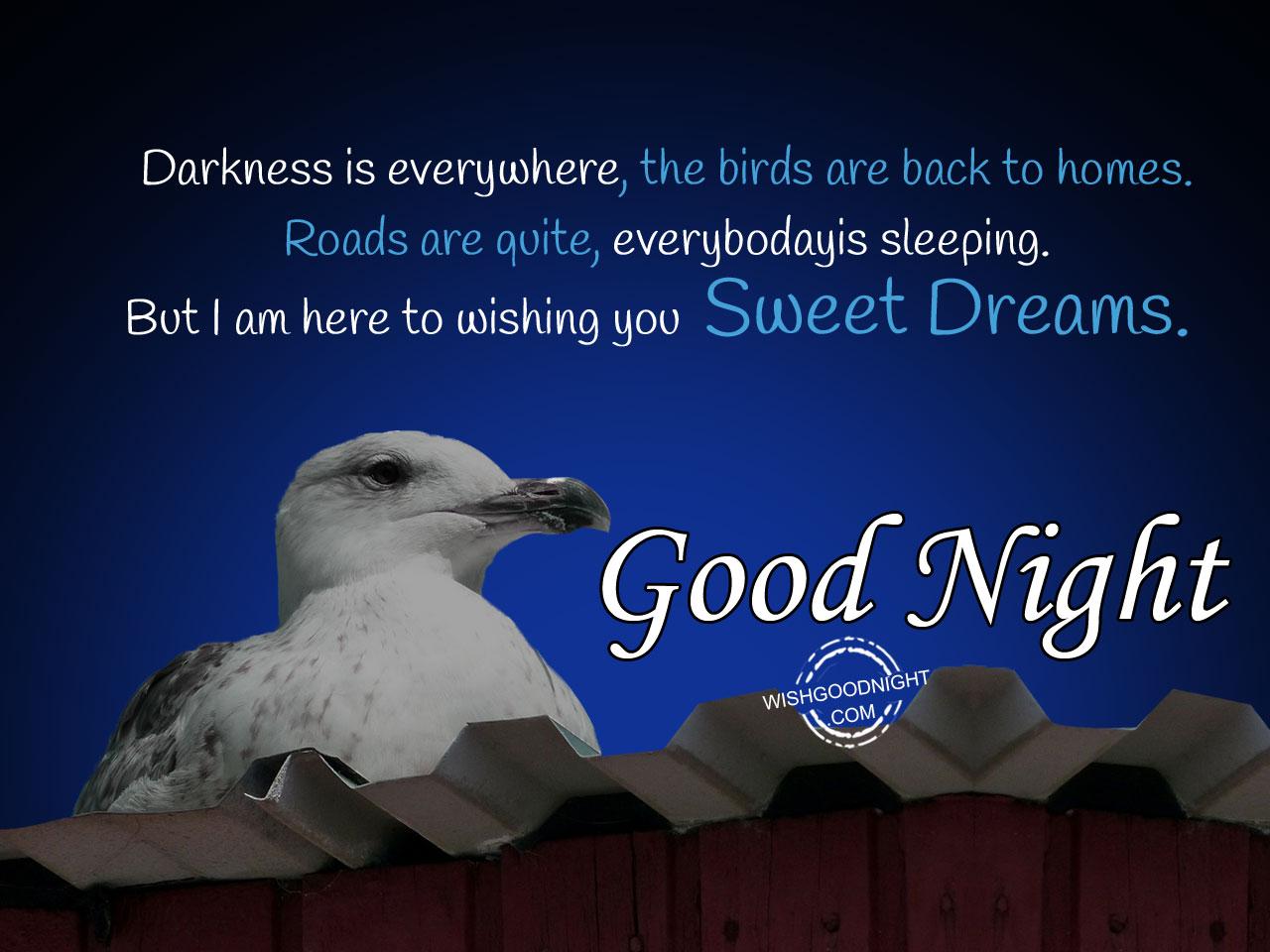 Good Night Wishes Good Night Pictures Wishgoodnightcom