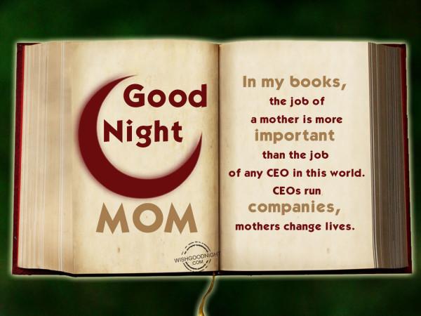 Job of a mother, Good Night