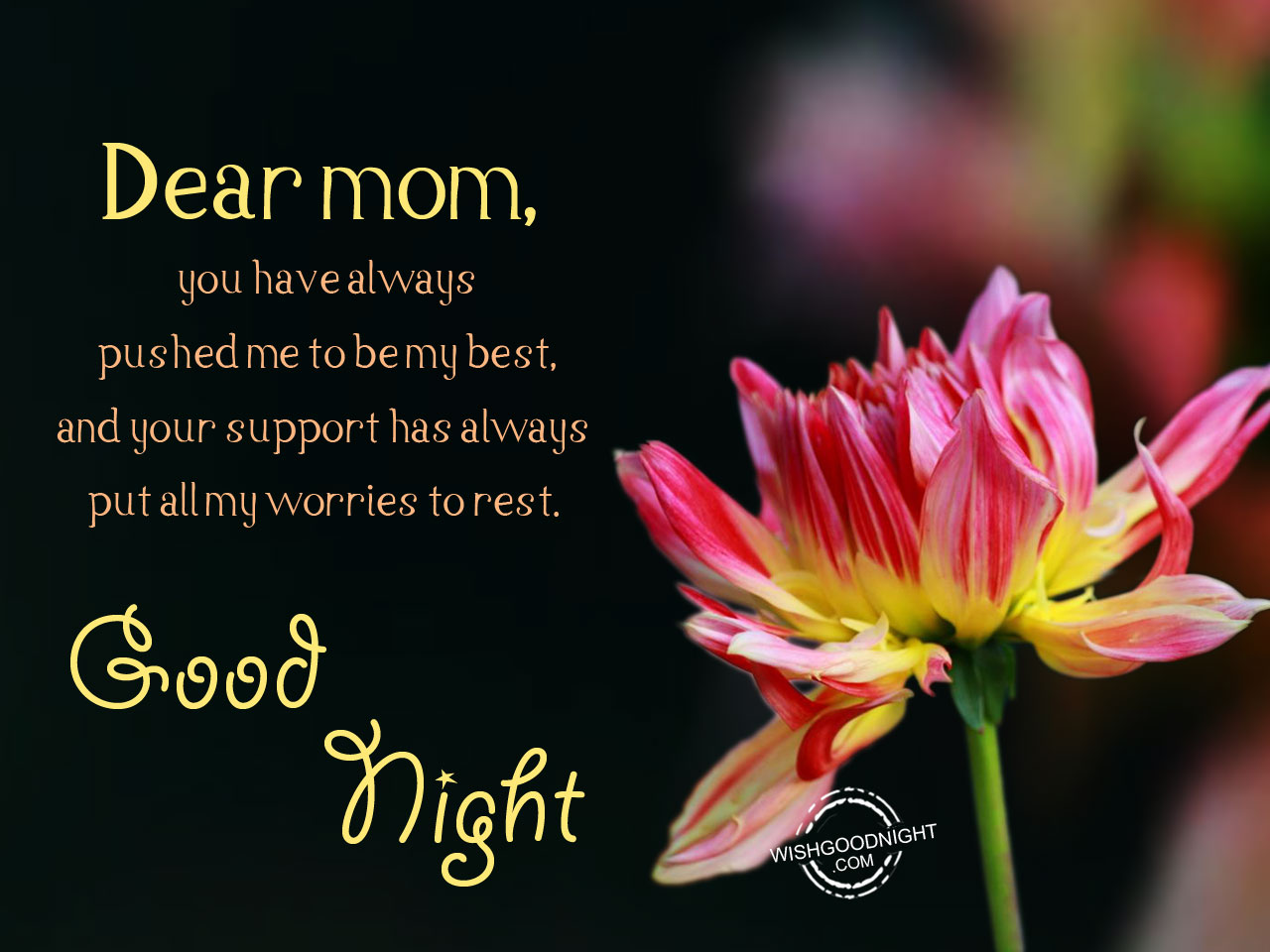 One night with mommie - 2 9