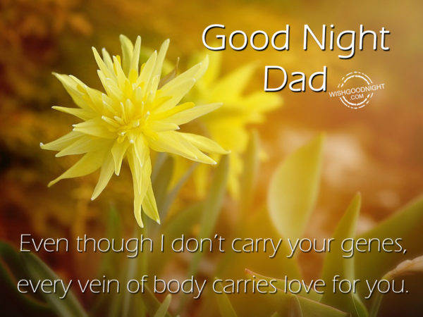 Every vein of body carries love for you, Good Night Dad
