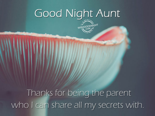 I can share all my secrets, Good Night Aunt