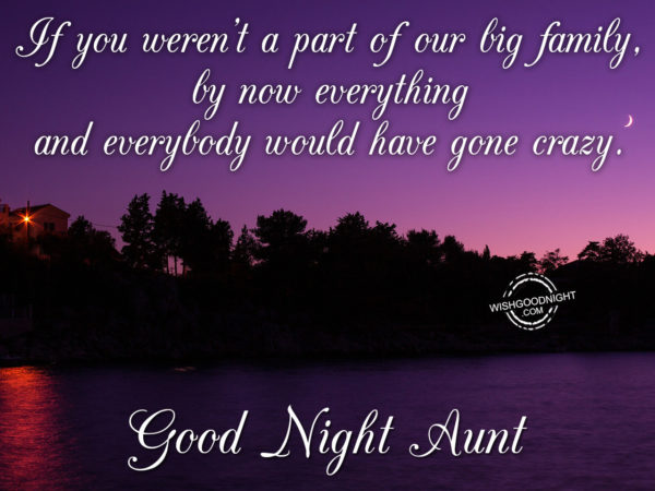 If you were'nt a part of our big family, Good Night Aunt
