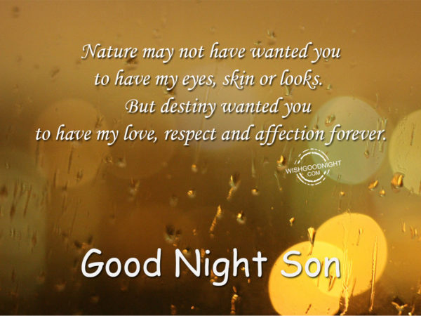 Nature wanted you – Good Night Son