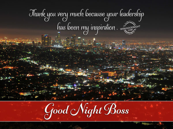 Thank you boss, Good Night Boss