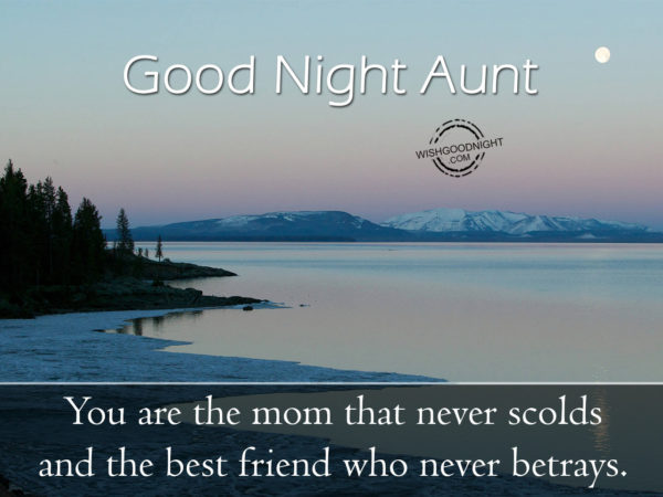 The best freind who never betrays, Good Night Aunt