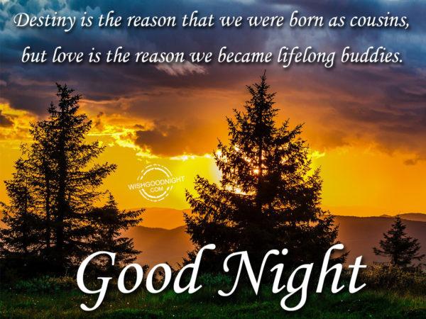 We become lifelong buddies, Good Night
