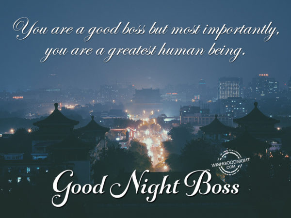 You are good boss – Good Night Boss